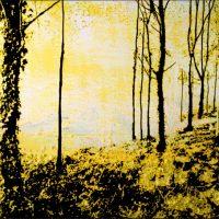 Dans la lumière Forêt de Fontainebleau - Technique mixte - 40x50 cm
