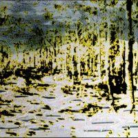 De la lumière Un matin à Fontainebleau - Technique mixte - 40x50 cm