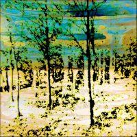 Lumière hivernale - Forêt de Fontainebleau - 30x30 cm