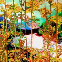 Série Jardins infinis - Chamonix - Les rives de L'Arve Photographie et acrylique sur toile - 100 x 100 cm