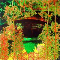 Série Jardins infinis - Le pont sur la voie verte Photographie et acrylique sur toile - 100 x 100 cm