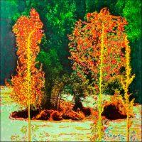 Série Jardins infinis - Îlot sur le Rhin à Schaffhausen Photographie et peinture acrylique sur toile - 100 x 100 cm