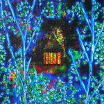 Série Jardins infinis - La maison dans les bois - Lucerne - Photographie et peinture - 100 x 70 cm