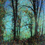 Série Jardins infinis - Sous le ciel - Fontainebleau - Technique mixte sur toile - 100 x 100 cm