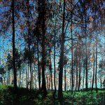 Série Jardins infinis - Un matin en forêt - Lucerne - Technique mixte sur toile - 100 x 100 cm